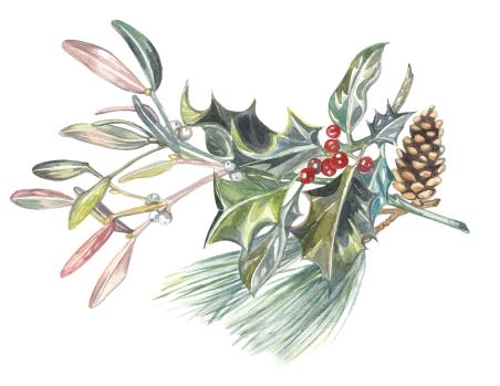 201612-christmas-sprigs001